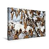 Premium Textil-Leinwand 45 cm x 30 cm quer, Trockene Buchenblätter im Schnee | Wandbild, Bild auf Keilrahmen, Fertigbild auf echter Leinwand. Buchenhecke in einem Park. (CALVENDO Natur)
