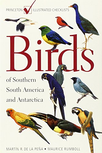 Birds of Southern South America and Antarctica: (Princeton Illustrated Checklists)