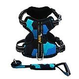 LZMXXQ Brustgurt für große Hunde Hundeleine Hundegurt explosionsgeschützt reflektierender Hundegurt Golden Retriever Dog Rope (Farbe : C, größe : M)