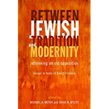 Between Jewish Tradition and Modernity: Rethinking an Old Opposition, Essays in Honor of David Ellenson (English Edition)