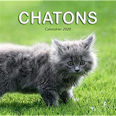 Calendrier Chatons 2020