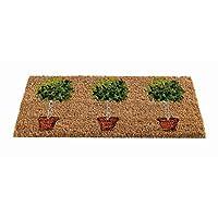 The Garden & Home 82494 Topiary Insert