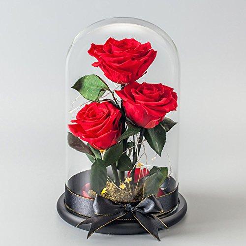 Boîte de cadeau fleur éternelle,Roses Fleurs fraîches Le jour de noël Cadeaux d'anniversaire créatifs Verre Lumière] Décorations de réception-rouge 15x25cm(6x10inch)