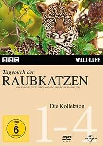 Tagebuch der Raubkatzen [4 DVDs]
