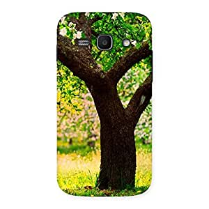 Enticing Green New Tree Back Case Cover for Galaxy Ace 3