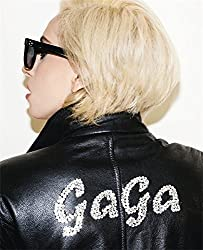 Lady Gaga X Terry Richardson by Lady Gaga (2011-11-22)