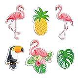 MORCART Flaming Kühlschrank Magnete, Kühlschrankmagnet Set Lustige Tukan Ananas Monstera Tier Deko Büro/Küche/Pinnwand/Kalender/Wohnung/Klassenzimmer/Tafel/Geschenk (Flamingo Magnete)