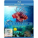 Faszination Korallenriff 3D - Jäger & Gejagte