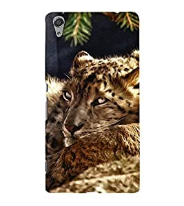 FUSON Sleeping Tiger Oil Painting 3D Hard Polycarbonate Designer Back Case Cover for Sony Xperia C6 Ultra Dual