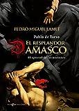 El Resplandor De Damasco (Novela histórica)