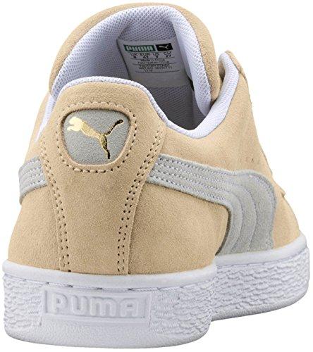 Zapatos Hombres Gamuza Clásicos De Puma puma Guijarro Blanco Para Puma blanco BAqFd7Xxdw