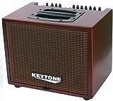 Acústica Amplificador 2canales con efectos 120W Max