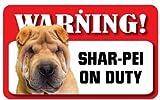 Shar-Pei cane-Cartello cartoncino laminato