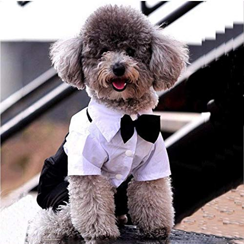 Gamloious Haustier Hund Katze Kleidung Prinz Tuxedo Nette Fliege Anzug Welpen Kostüm Overall-Mantel schwarz S Tuxedo-overall