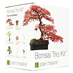 Idea Regalo - Plant Theatre - Bonsai Trio, Kit per la Coltivazione di 3 Bonsai