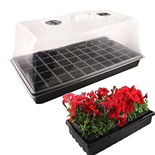 50 Trous Vegetable Seeds floriculture Box Semis Plante Plateau Outil de jardin