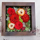 ZHHR Massivholz Getrocknete Blumen Everlasting Blume Stereo Fotorahmen Handgefertigte Geschenkbox Kreative Satz Ewige Blume, Blumen, Rosen