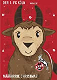 1. FC Köln Fußball Adventskalender Kalender 2017 *NEU*OVP*