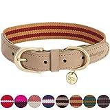 Blueberry Pet Klassisches Gestreiftes Basis Echtleder Hundehalsband in Rot und Kupferbraun, L, Hals 46cm-56cm