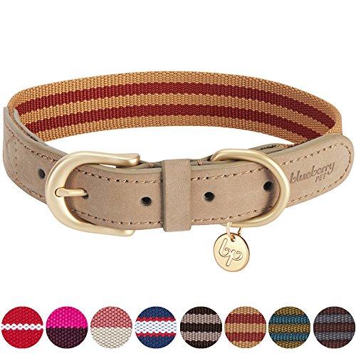 Blueberry Pet Klassisches Gestreiftes Basis Echtleder Hundehalsband in Rot und Kupferbraun, M, Hals 38cm-46cm (Nylon Hundehalsband)