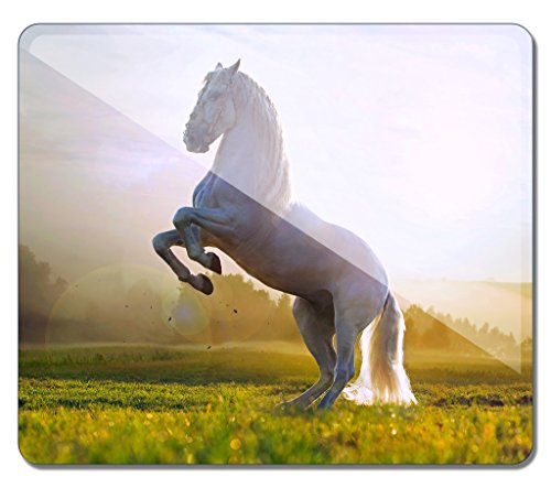 51nvqWBZ3qL UK BEST BUY #1iCustomonline The Horse Silhouettes In The Sunset Light Eco Friendly Cloth Rubber Mouse Pad in 32.8*28*0.4CM price Reviews uk