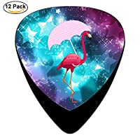 Classic Flamingo Umbrella Design Guitar Picks (12 Pack)
