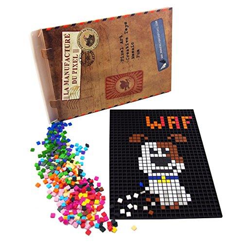 La Manufacture du Pixel - Kit Tapis et 900 Pixels à insérer (Noir) - Pixel Art, Loisir Créatif, Mosaïque, Fun ! - Créez à l'infini Tout l'art Qui Vous Ressemble