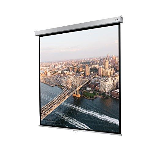 Celexon Rollo-Leinwand Professional Plus | Format 1:1 | Nutzfläche 200 x 200 cm | Beamer-Leinwand geeignet für jeglichen Projektortyp | Auch als Full-HD und 3D-Leinwand einsetzbar | einfache Installation & gute Planlage |