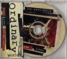 Ordinary World (cd2)