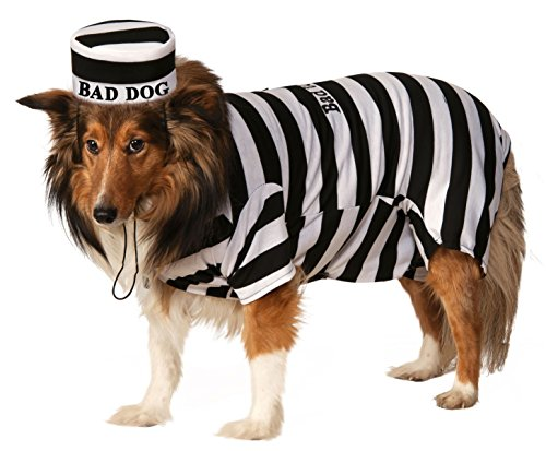 Costume-Medium (Gefangener Hund Kostüme)