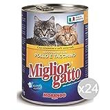 Set 24 MIGLIOR GATTO Bocconcini Pollo-Tacchino 400R. Cibo Per Gatti