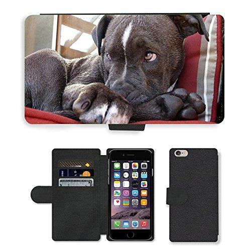 Just Mobile pour Hot Style Téléphone portable étui portefeuille en cuir PU avec fente pour carte//m00139995Pitbull Puppy Regarder pour chien Canine//Apple iPhone 6Plus 14cm