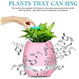 Flyngo Rechargeable Smart Music Bluetooth Flower Pot & Plant Touch Music Like Piano System With LED Night Light For Home, Bedroom & Desk Decoration (Without Plant) Pink