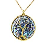 Best Amazon Collection Friends Gold Necklaces - FOCALOOK Round Abalone Shell Tree of Life Necklaces Review