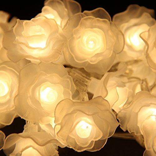 Generic Romantischen 30-LED Lichterkette Deko Innen Batterie Haus Hochzeit Weihnachten Geburtstag Licht Dekoration , Rose Blume , Warmweiß