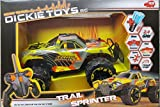 Simba-Dickie-RC-Racer-Trail-Sprinter-RTR