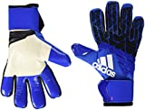adidas Erwachsene Ace Trans Pro Torwarthandschuhe, Mehrfarbig (Blue/Core Black/White/Shock Pink),11