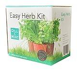 immagine prodotto Grow Your Own Herb kit–5confezioni di semi di erbe, kit completo di tutto il necessario per iniziare a coltivare, vita sana e kick Start Grow Your Own