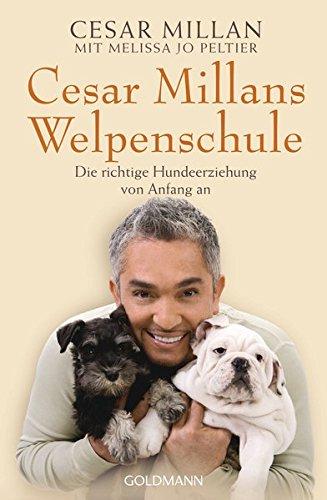 hundeinfo24.de Cesar Millans Welpenschule: Die richtige Hundeerziehung von Anfang an