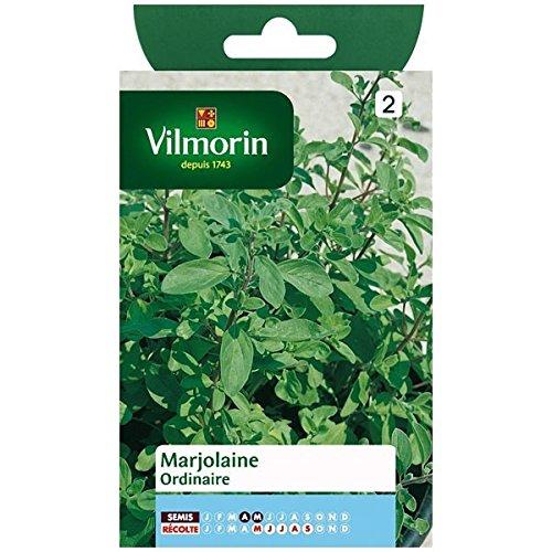 Vilmorin - Sachet graines Marjolaine ordinaire