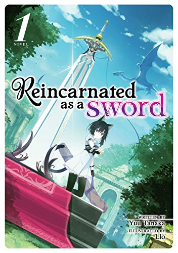 Reincarnated as a Sword (Light Novel) Vol. 1 (English Edition)