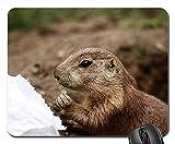 Yanteng Tapis de Souris de Jeu, Tapis de Souris, Animaux de Chien de Prairie Photographie animalière Zoo Nager 3