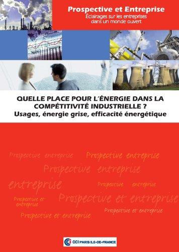 Quelle place pour l'energie dans la compétitivité industrielle ?  Usages, énergie grise, efficacité énergétique