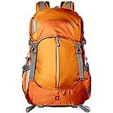 AmazonBasics - Kamera-Rucksack, Wander-Ausrüstung, Orange