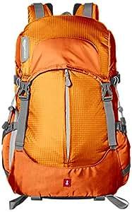 AmazonBasics - Zaino per fotocamera, serie Hiker, Arancione