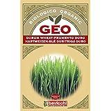 Geo Trigo Duro - Semillas para germinar, 12.7 x 0.7 x 20 cm, color marrón