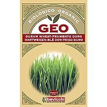Geo Trigo Duro - Semillas para germinar, 12.7 x 0.7 x 20 cm, color
