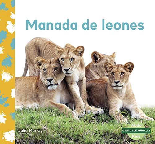 Manada de leones (Lion Pride)