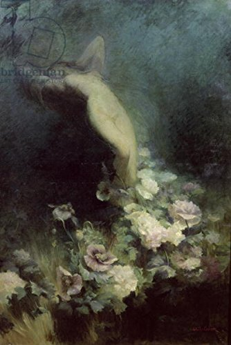 Leinwandbild Fleur Rosa