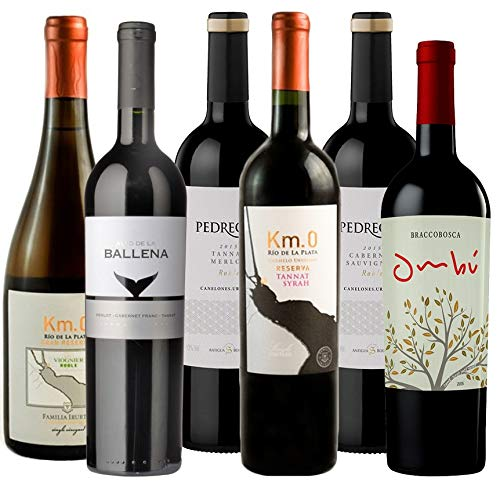 6er Taste of Uruguay, Südamerika Weinpaket